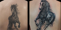 cover.up, horse, kun, zada,tetovani